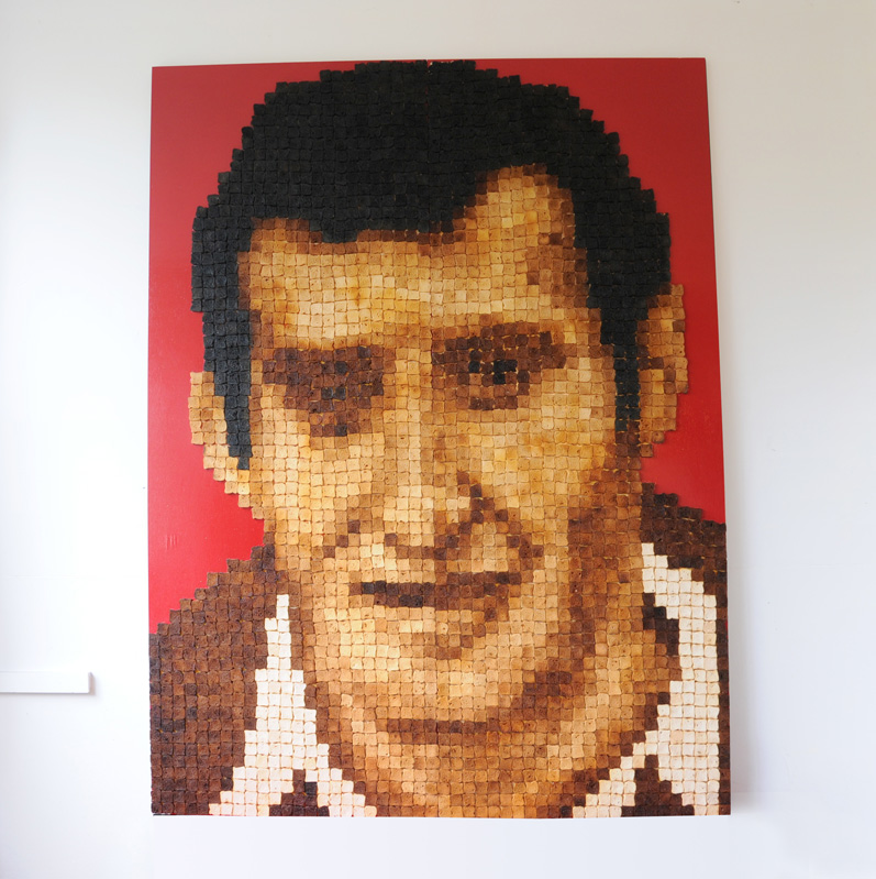 Gareth Edwards - A Tribute to GARETH EDWARDS